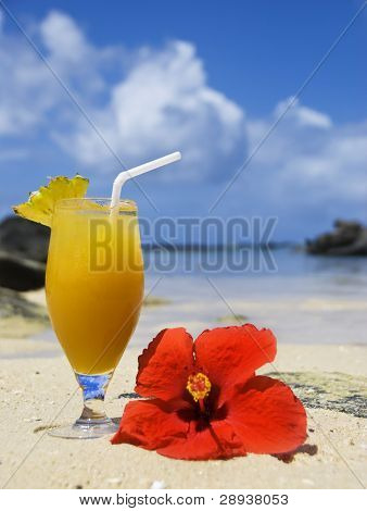 a Fresh cold fruit cocktail drink and red poinsettia on a tropical island beach