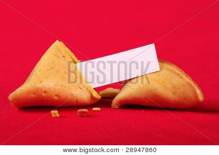 Fortune cookie (blank)
