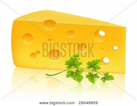 Piece of cheese with parsley