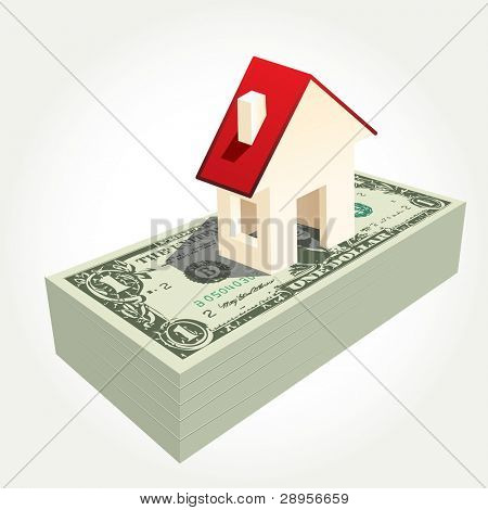 vector illustration of the house on dollars