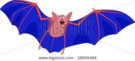 Smiling bat