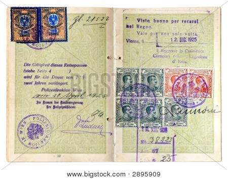 Early European Passport Dated 1925.