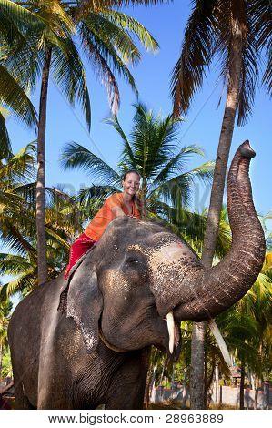 Frau Reiten Elefant