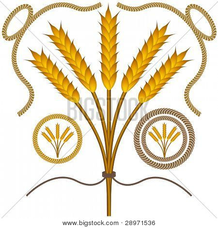 An image of roped wheat bushel with rope borders.