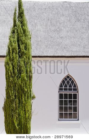 White church with cypress