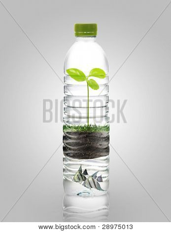 recycling, water bottles