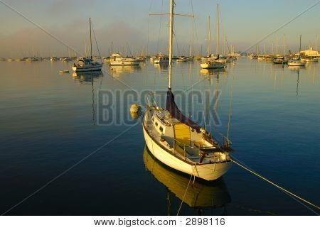 Sail Boat San Diego