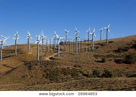 Many Wind Turbines On Hill