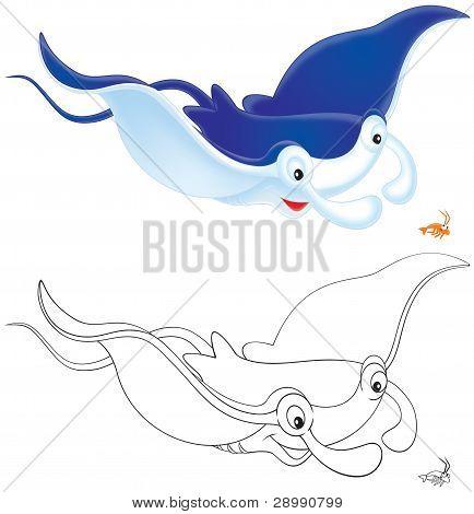 Ray Manta and krill