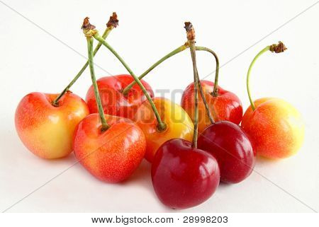 early yellow and red sweet cherries