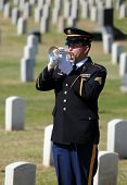 SAN DIEGO, CA - OCTOBER 29, 2008: Member of military Honor Guard playing taps at a ceremony for fall