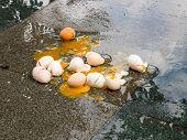 Broken Eggs On Wet Asphalt, Bad Day In Rainy Weather. poster
