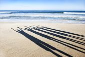 image of crew cut  - Shadow silhouettes of five people on the beach - JPG