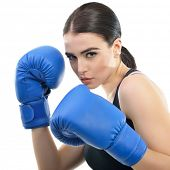 Sporty girl doing boxing exercises. Photo of young woman with boxing gloves  isolated on white backg poster