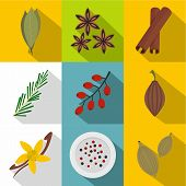 Eco Spices And Herbs Icon Set. Flat Style Set Of 9 Eco Spices And Herbs Icons For Web Design poster