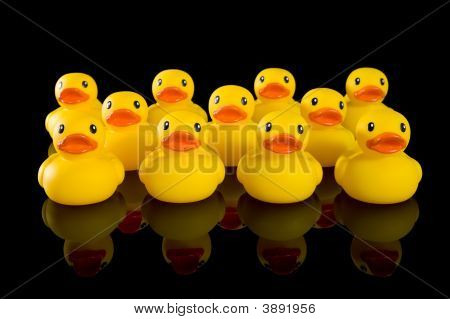 Yellow Rubber Ducks In Rows