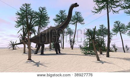 brachiosaurus on sand terrain