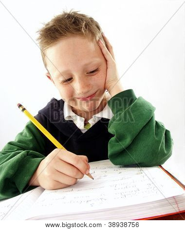 Little school kid on his desk.mixed race student.