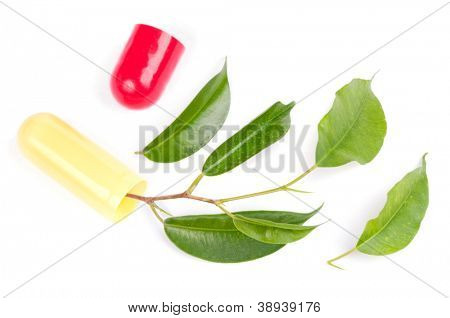 Leaves from open pill, isolated on white - natural medicine concept