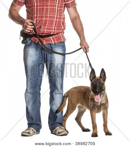Man holding a leashed and panting Belgian Shepherd against white background