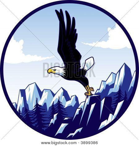 Cici\'S Eagle