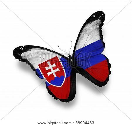 Mariposa de la bandera del eslovaco, aislado en blanco