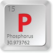 phosphorus button