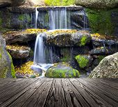 image of leafy  - wood textured backgrounds in a room interior on the waterfallt backgrounds - JPG