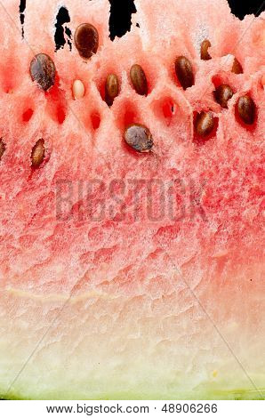 Fresh watermelon slice closeup
