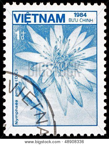 Postage Stamp Vietnam 1984 Lotus, Nymphaea Ampla, Flower