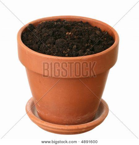 Fresh Ground In A Flowerpot