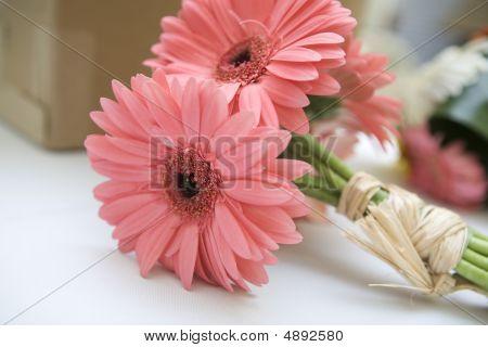 Pink Daisy Bouquet
