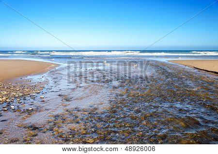 Ocean And River