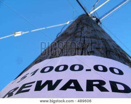 One Thousand Dollar Reward