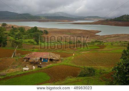 Indian Farming Land