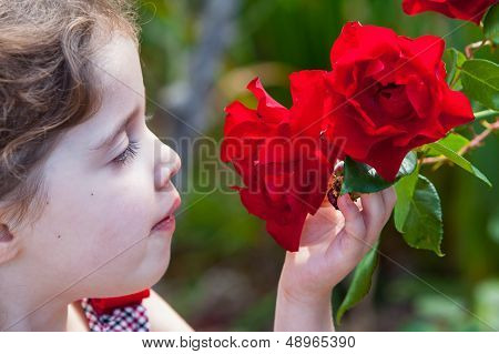 Girl Snifing A Rose