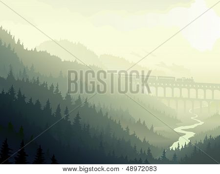 Steam Train In Wild Coniferous Wood In Morning Fog.