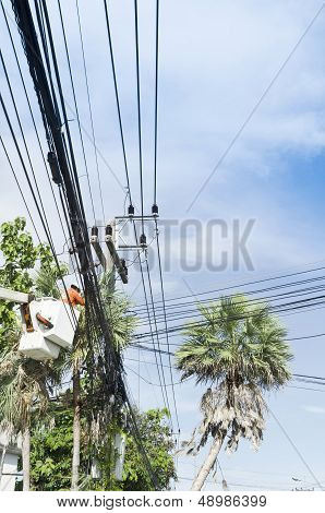 Electrician Worker In Cherry Picker Solve Palm Leaf And Protect A Wire Of The Power Line