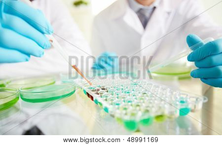 Hands of clinicians working with liquids in laboratory