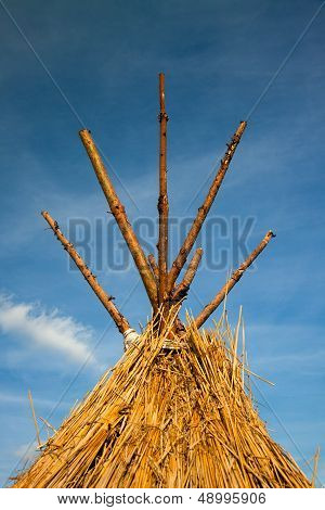 straw thatched roof