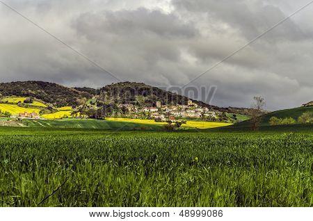 spain navarra field