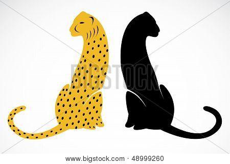 Vector Image Of An Cheetah