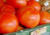 Постер, плакат: Tomatoes $2 99 lb