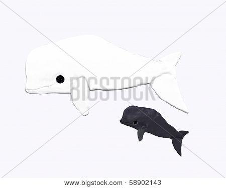 Mother beluga