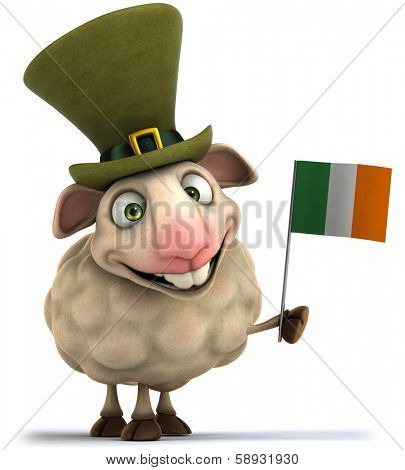 Irish sheep
