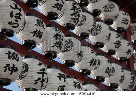Japanese Lanterns - Tokyo