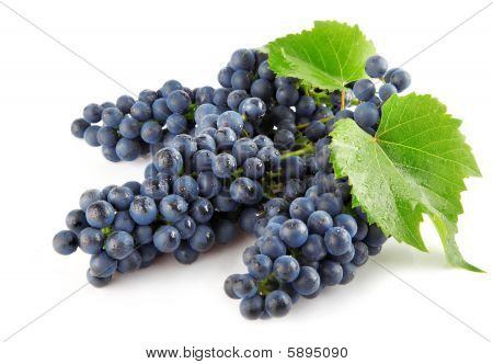 Blue Grape With Green Leaves Isolated Fruit
