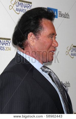 LOS ANGELES - JAN 22:  Wayne Newton at the UCLA Head and Neck Surgery Luminary Awards at Beverly Wilshire Hotel on January 22, 2014 in Beverly Hills, CA