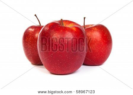 Three Shiny Red Apples Isolated On White