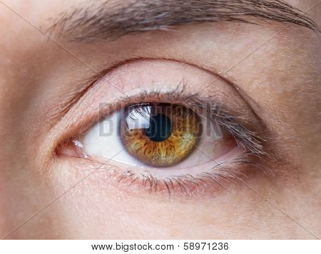 Closeup of female natural brown eye without makeup